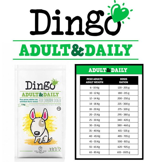 Dingo Tabla alimentación adult and daily