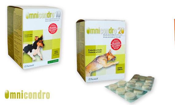Oferta Condroprotectores Omnicondro y JT Pharma