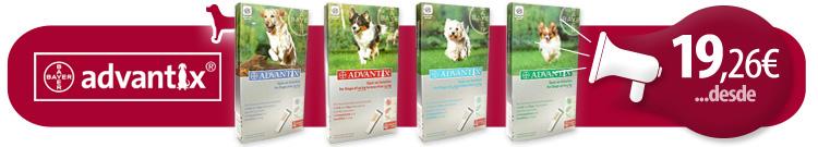 Antiparasitario Perro Externo Pipetas Advantix desde 19,26€ La caja de 4 Pipetas.