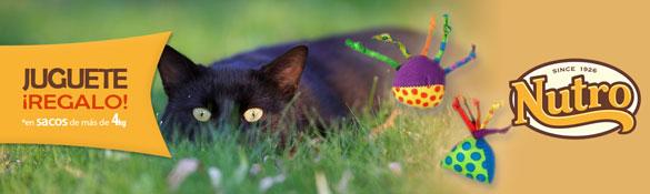 Regalo Juguete PetStages para gato por la compra de Pienso Optima Nova y Nutron