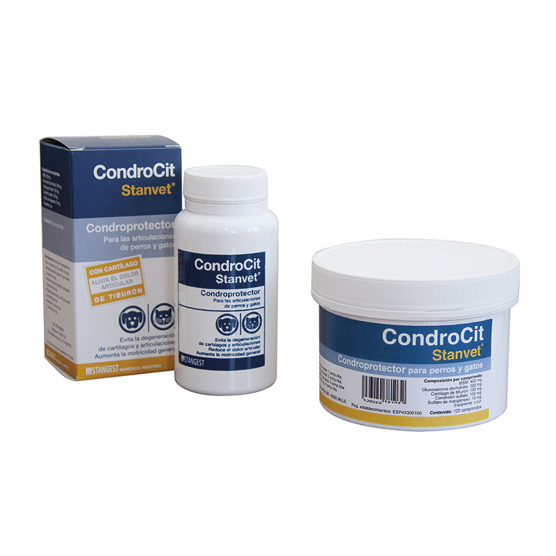 Condrocit Stanvet for Joints Dogs and Cats