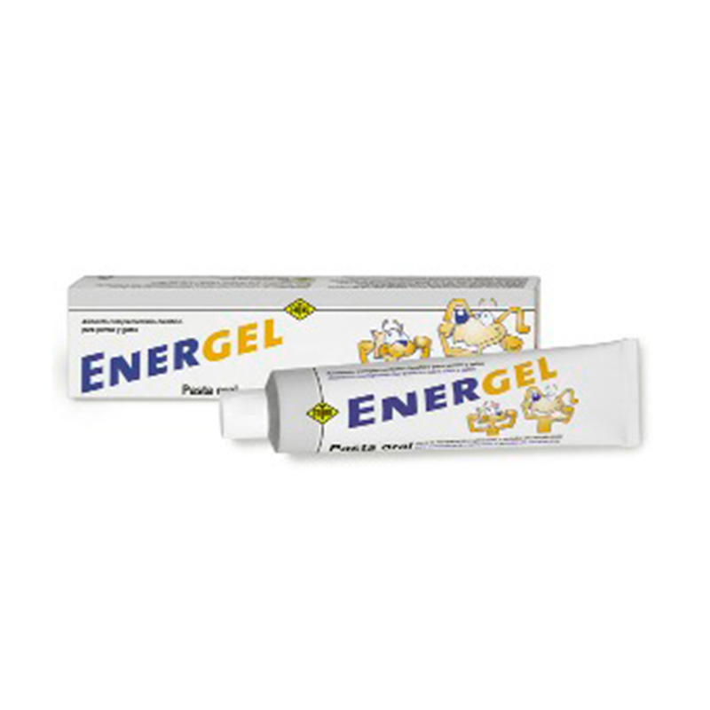 Energel Oral Paste for dogs and cats 80gr Fatro