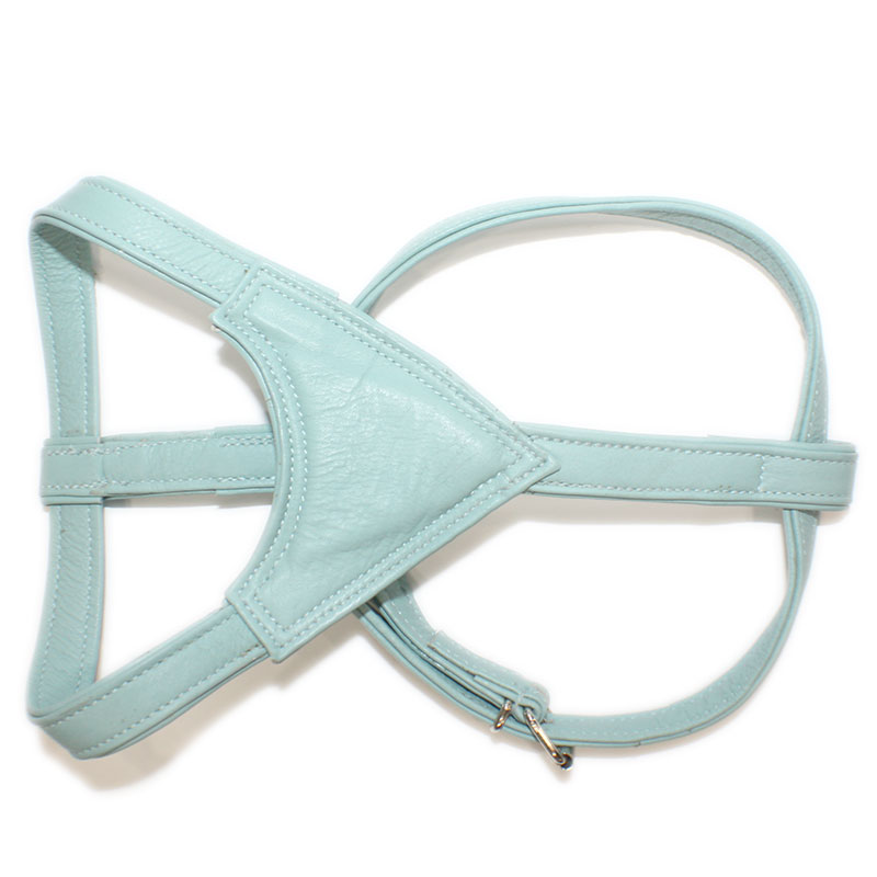 Leather Harness Moscow Turquoise