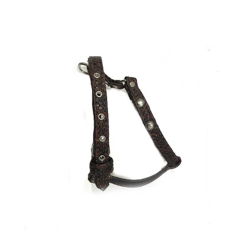 Malucchi Harness Amazon Dark Brown