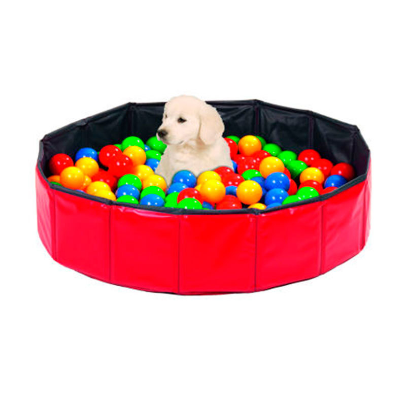 Doggy Swimming Pool for dogs with balls