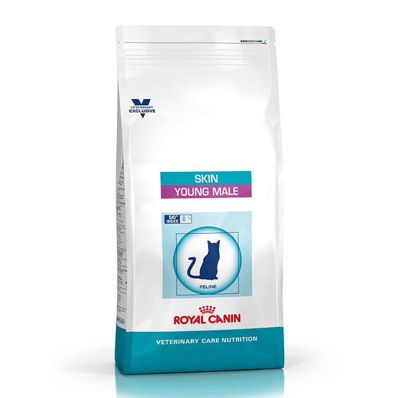 Royal Canin Gato Skin Young Male