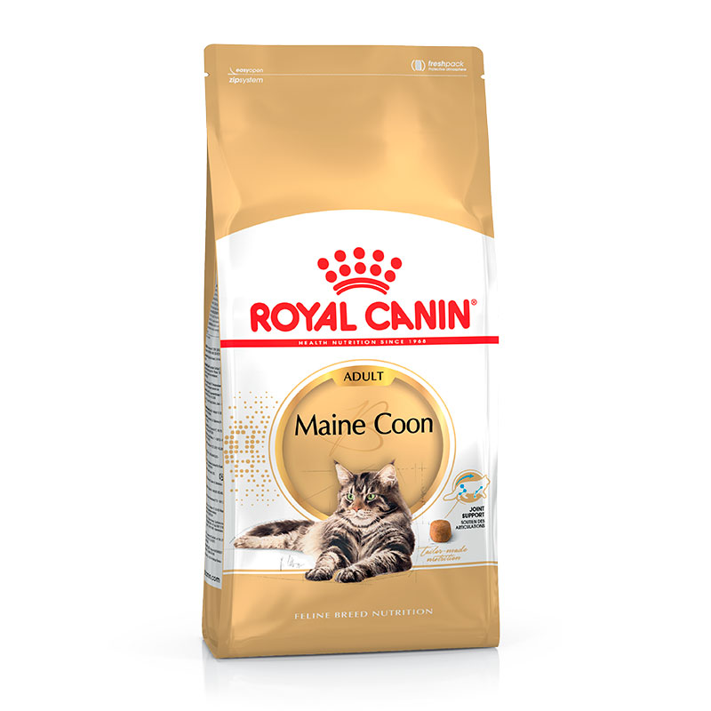 gato alimentaci n royal canin breed feline royal canin gato maine coon. Black Bedroom Furniture Sets. Home Design Ideas