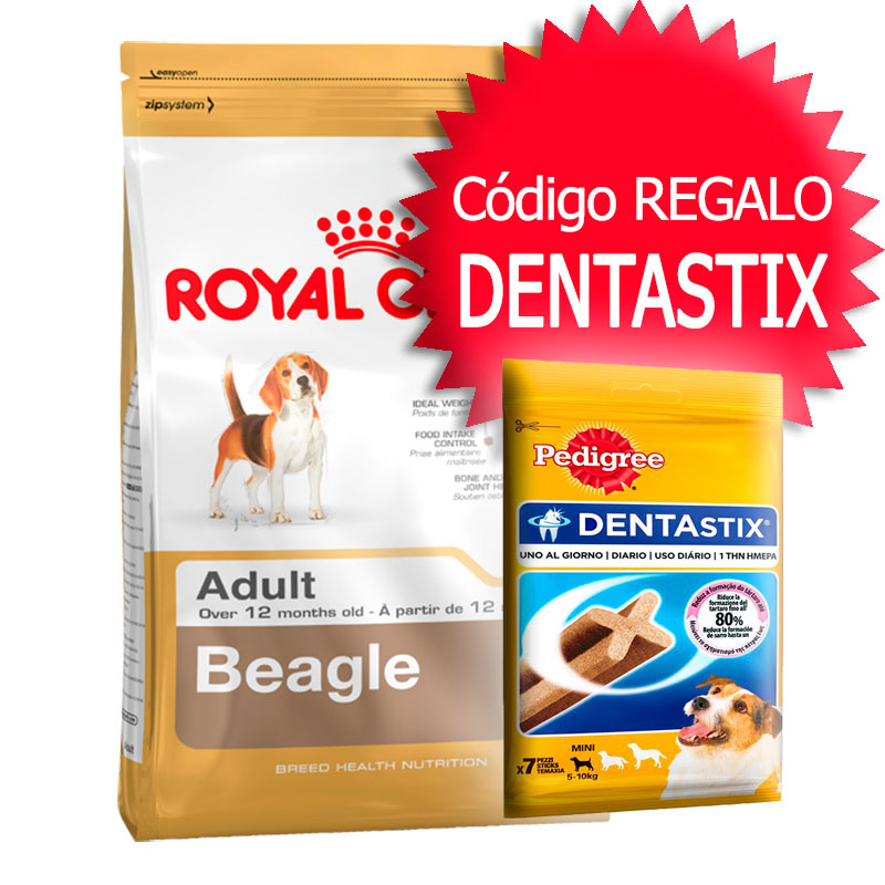 Royal Canin Beagle Adulto 12Kg+Cupón