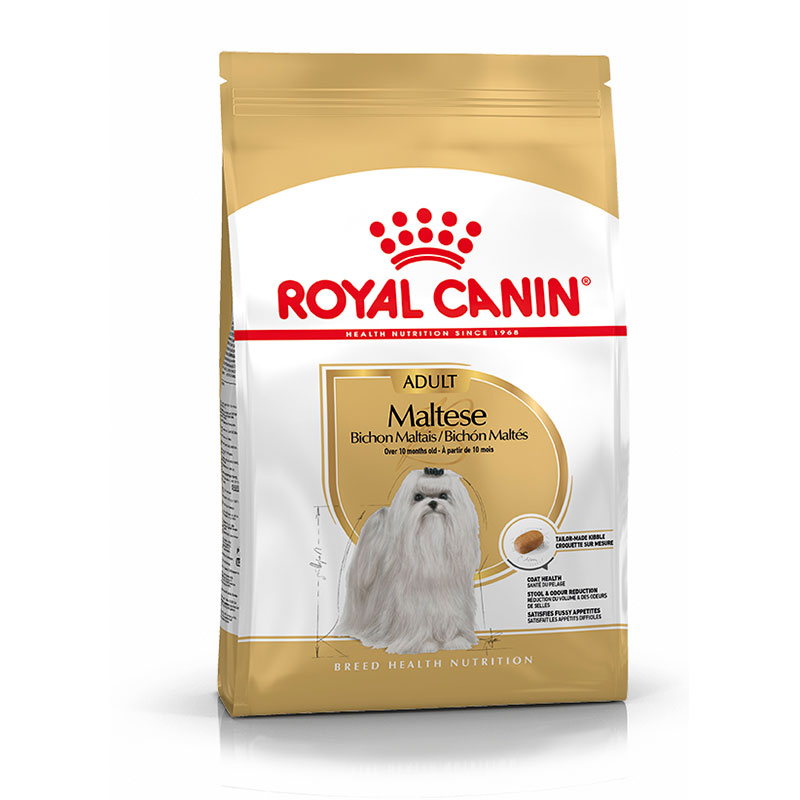 Royal Canin Bichón Maltés Adulto