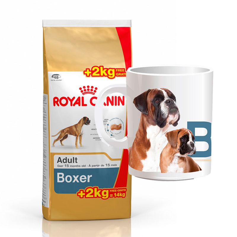 royal canin boxer 26 adulto 12kg 2kg gratis taza. Black Bedroom Furniture Sets. Home Design Ideas