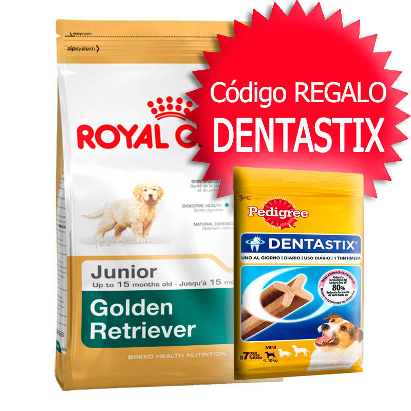 perro alimentaci n pienso royal canin razas royal canin golden retriever 25 adulto. Black Bedroom Furniture Sets. Home Design Ideas