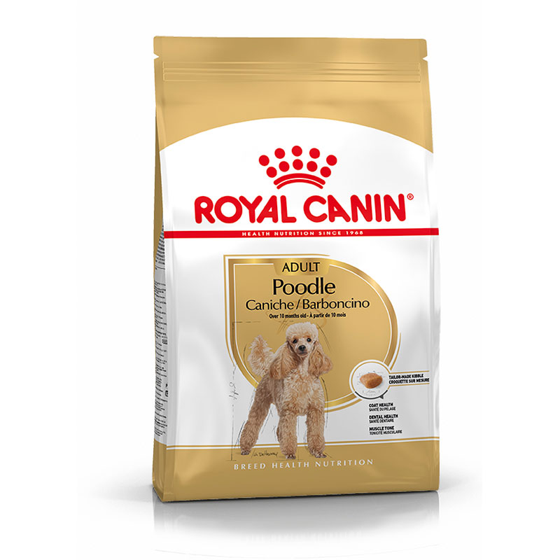 Royal Canin Caniche Adulto