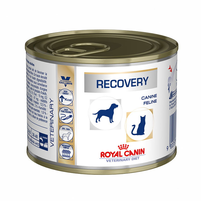 Royal Canin Recovery Wet