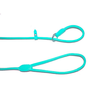 Leather Drowing Round Leash Delhi Turquoise