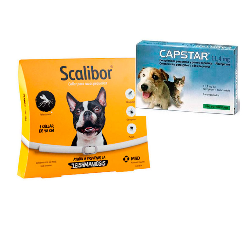 Antiparasitic Collar Scalibor 48 cm + Capstar 11,4mg