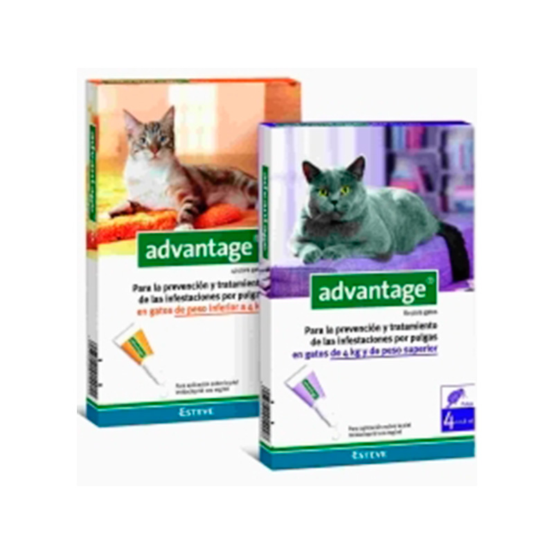 Advantage Flea Pipettes for Cats