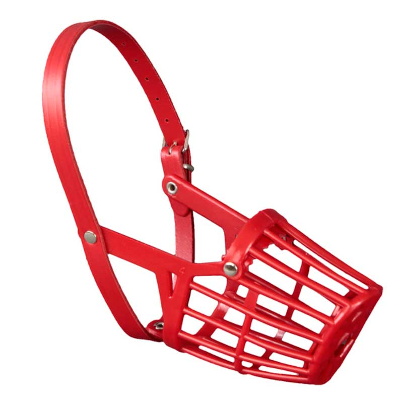 Arppe Plastic Muzzle Red