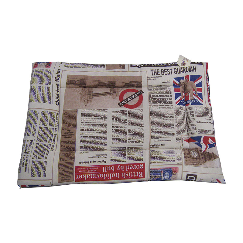 Care Dog Descanso Rectangular Thin Mat Newspaper