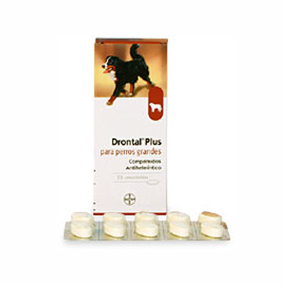 Internal Antiparasitic Drontal Plus. Large Dogs +35 Kg