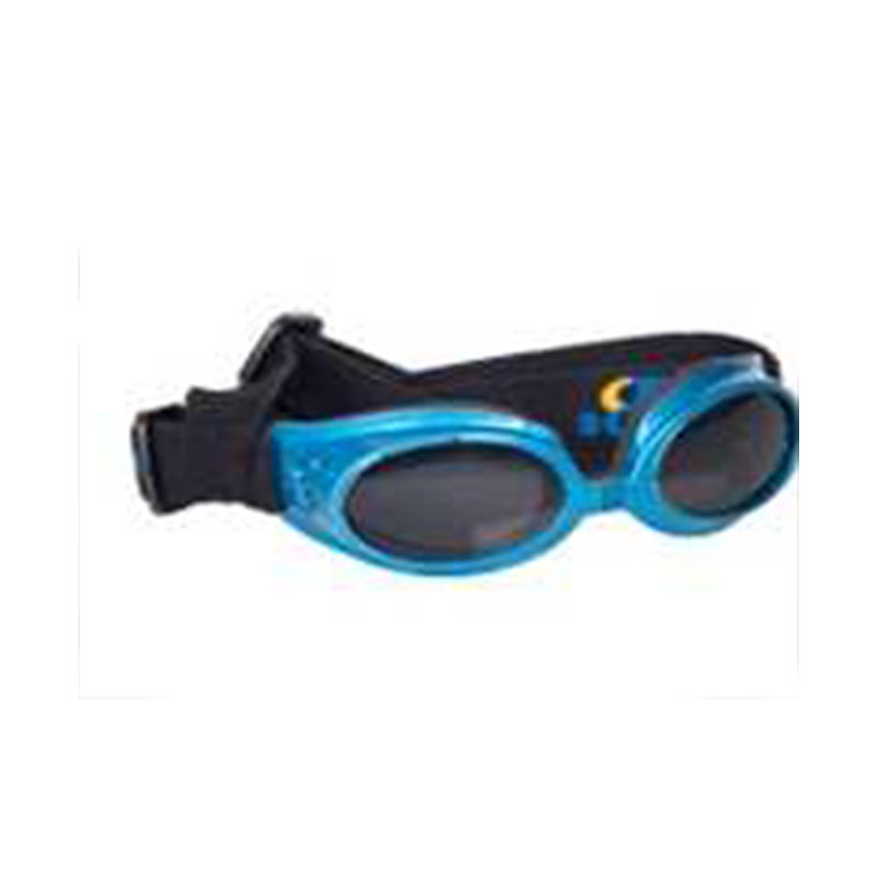 Blue surfdog glasses