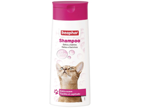 Shampoo for Cats