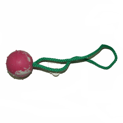 HS Sprenger Hard Rubber Ball with Rope