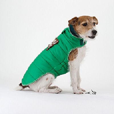 Impermeable Verde United Pets
