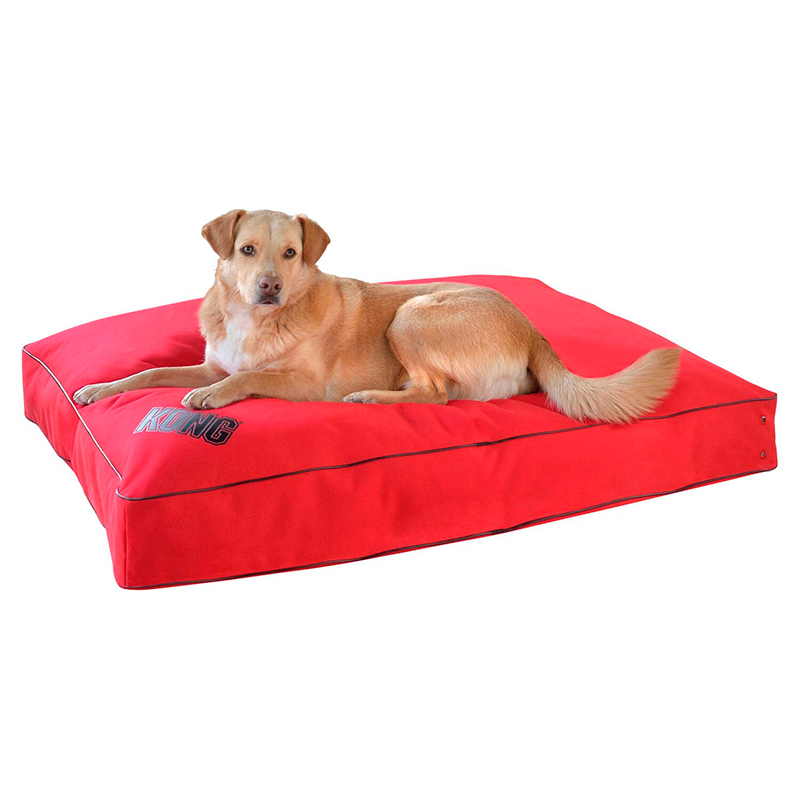 Kong Rectangular Red Pillow