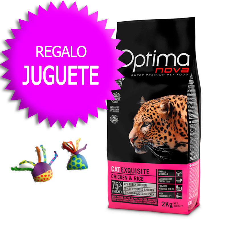 Optima Nova Gato Exquisite