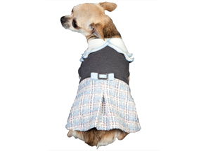 Fashion Coats for Dogs