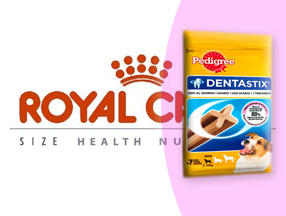 Pienso Royal Canin Size