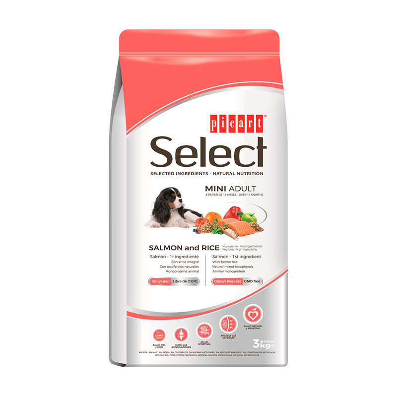 Picart Select Mini Adult Salmon & Rice