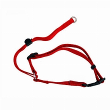 Freedog Collar Muzzle Training Red