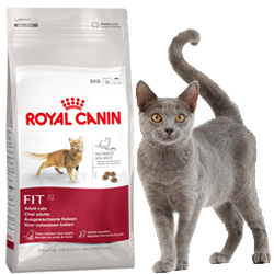royal canin gato fit 32 gato alimentaci n pienso. Black Bedroom Furniture Sets. Home Design Ideas