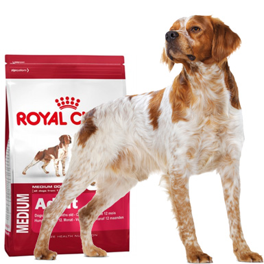 perro alimentaci n pienso royal canin size royal canin medium adult. Black Bedroom Furniture Sets. Home Design Ideas