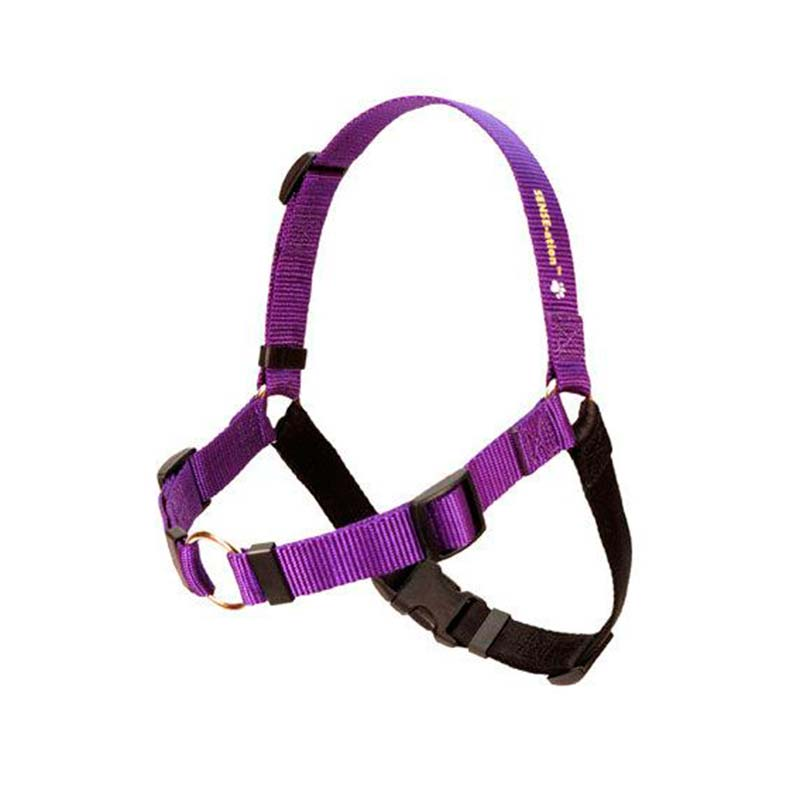 SENSE-ation® Dog Harness Purple