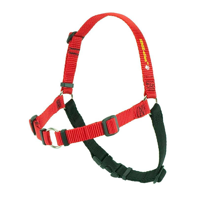SENSE-ation® Dog Harness Red