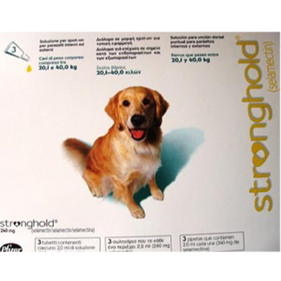 Antiparasitic Stronghold for dogs 20,1Kg-40Kg 240mg
